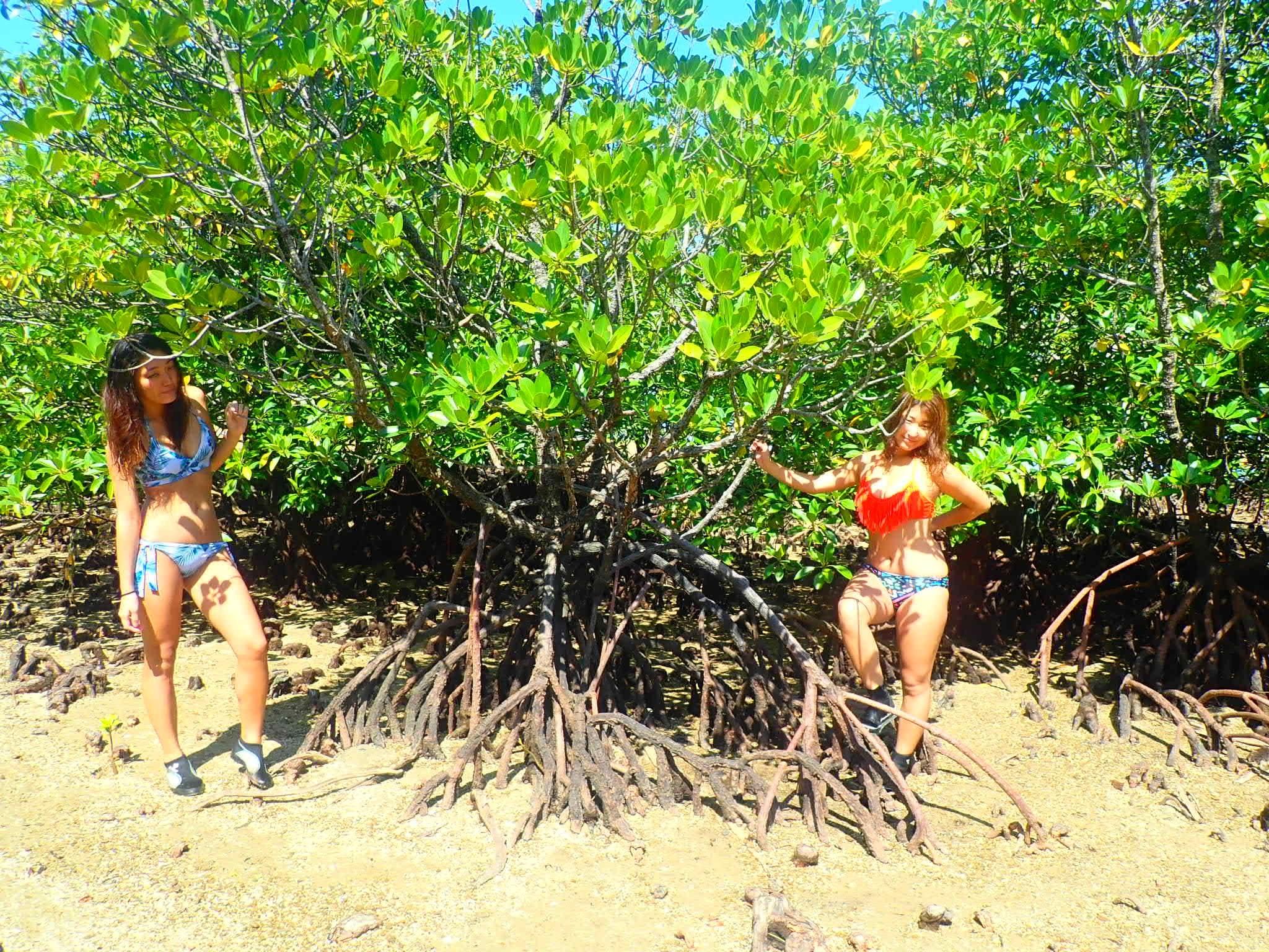 女子旅でマングローブの木々の前で写真