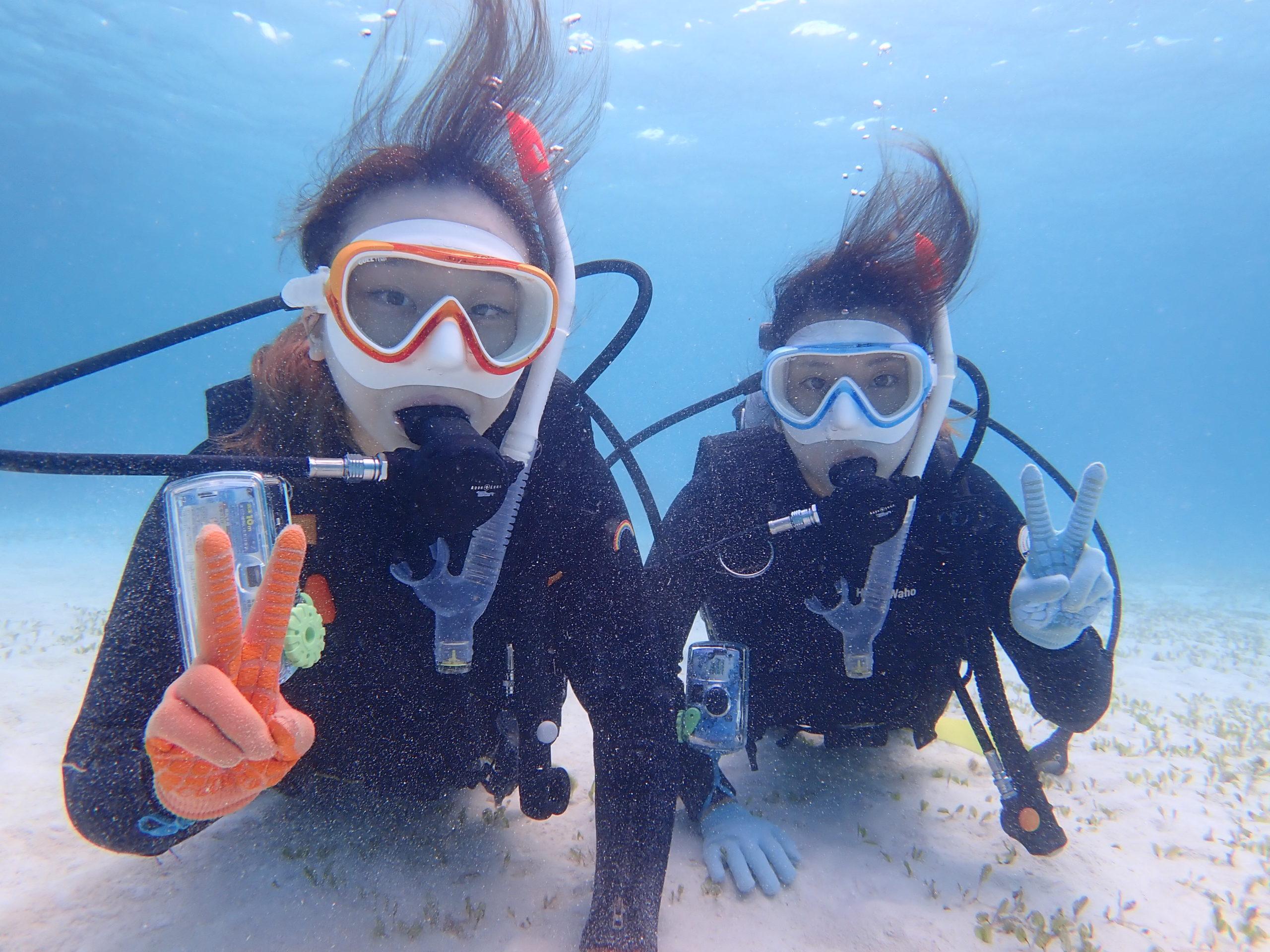 【地域共通クーポン対象】ウミガメシュノーケリング付き!半日体験ダイビングツアーPMコース(No.452)