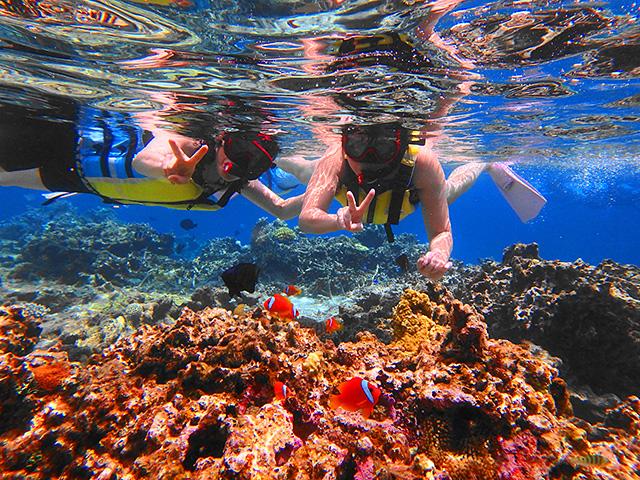 パナリ島周辺の海でシュノーケリング