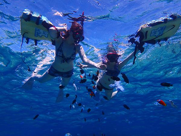 透明度抜群のパナリ島の海でシュノーケリング
