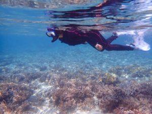 透き通った海でシュノーケリング