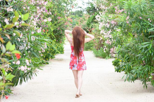 八重山諸島の自然の中で写真を撮る女性