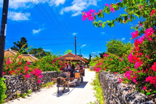 竹富島の街並みと水牛車