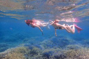 石垣島のサンゴ礁でシュノーケリング中の女性