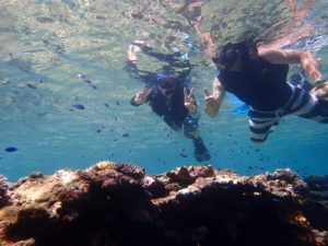 透明な海で泳ぐ男女