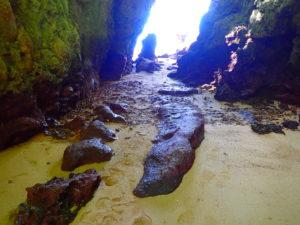 サビチ鍾乳洞