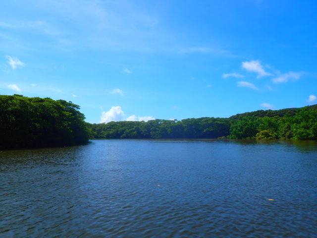 西表島、仲間川