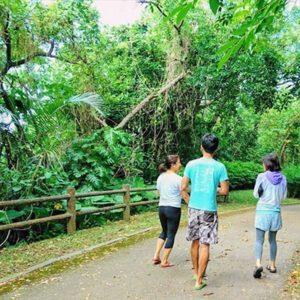 石垣島 森林散歩