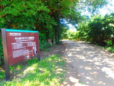 平久保サガリバナの看板
