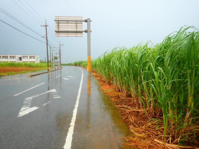 宮古島 雨